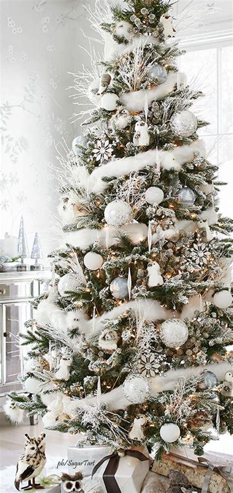 christmas christmastree holiday christmas trees