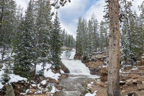 utah s national forests begin sale of christmas tree
