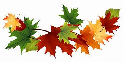 Clip Fall Clipart Leaves Autumn 1328