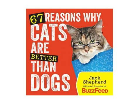 better cats dogs than why reasons newegg