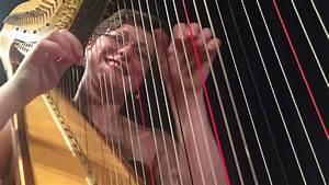 10 Amazing Images Of The Chicago Harp Quartet Performing ...