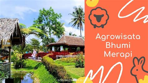 agrowisata bhumi merapi wisata edukasi  instagramable