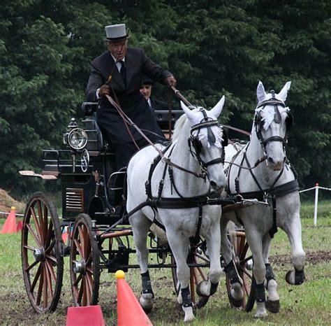 carrozze cavalli usate previsioni meteo equine carrozze in forte movimento a