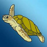Hawaiian Sea Turtle Clipart   1200 x 1200 jpeg 350kB