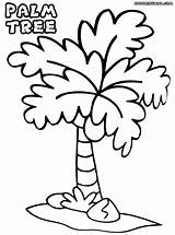 Palm Tree Coloring Pages Print Palmtree Colorings sketch template