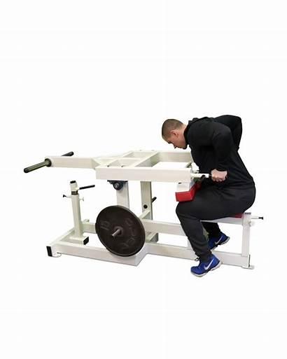 Triceps Machine Gym Equipment K6x Tricipiti Macchina
