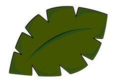 jungle leaves images leaves leaf template leaf