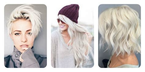 blond polaire meche meche blond polaire xa11 jornalagora