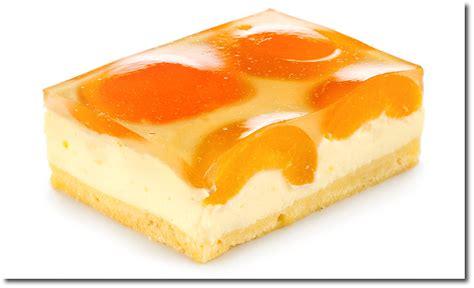 Blech Kuchen Mit Obst Und Pudding Rezept