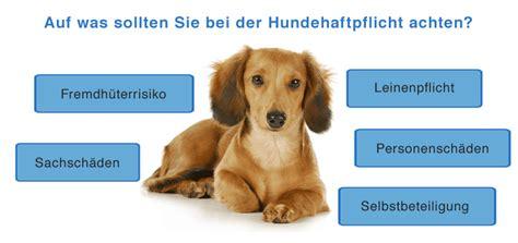 uelzener hundehaftpflicht hundeversicherung hier einfach