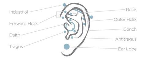 Lobe Ear Piercing Diagram by 43 Best Ear Piercing Inspiration Images On