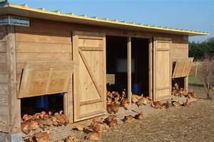 Construire Un Poulailler En Bois : poulailler professionnel ~ Melissatoandfro.com Idées de Décoration