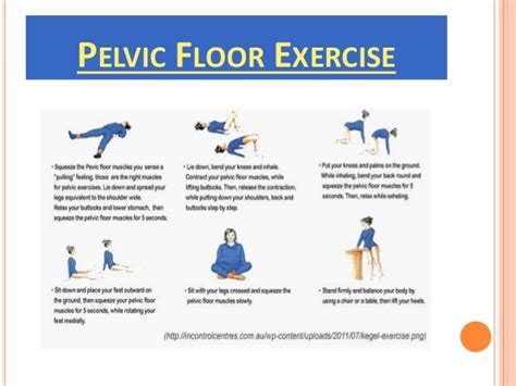 pelvic floor dysfunction constipation exercises pelvic organ prolapse