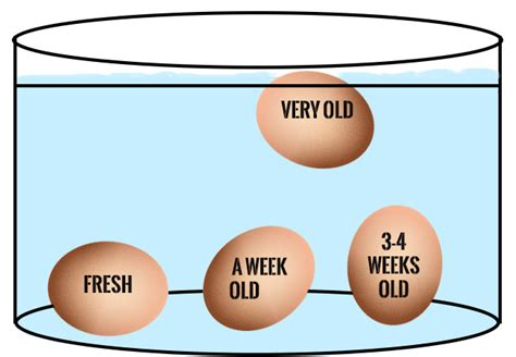 do bad eggs sink or float how to tell when your egg has expired welcome to s