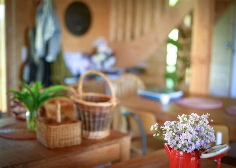 la cuisine des plantes sauvages la cuisine des plantes sauvages le 20 avril 2015 l