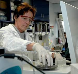 File:Scientist working in laboratory (1).jpg