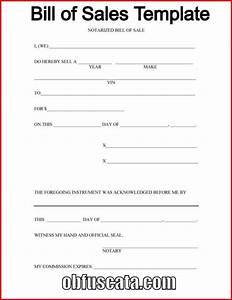 Junior buyer resume