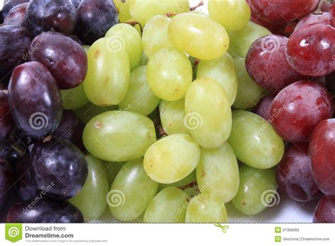 Three Different Types Of Grapes Stock Photo Image 21369060