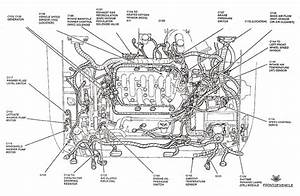 33 2003 Ford Windstar Exhaust System Diagram
