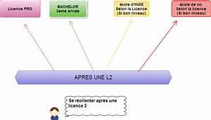 Apres Un Bac Es : r orientation fac se r orienter apr s une licence ~ Maxctalentgroup.com Avis de Voitures
