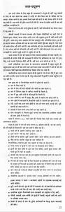 Essay on environmental pollution in punjabi language