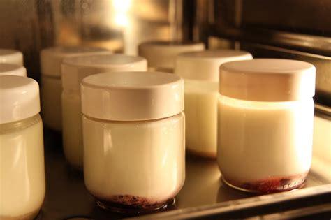 ma cuisine vapeur comparaison yaourts cr 232 me de marrons au four vapeur et 224 la yaourti 232 re