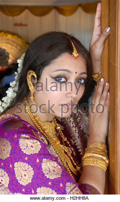 indian ornaments stock photos indian ornaments stock images alamy