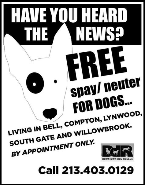 You Should Probably Read This About Free Spay And Neuter