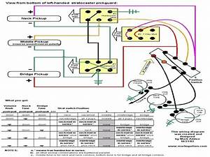 American Standard Stratocaster Wiring Diagram