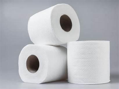 Toilet Paper Budget Than During Chancellor Bog