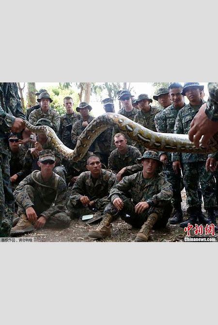 美国海军陆战队丛林生存训练实录(图)-搜狐新闻