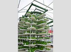 'Top 50 of 09' techology kudos for vertical farming
