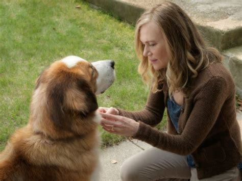 dogs purpose review