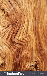 Picture Of Curved Wood Grain