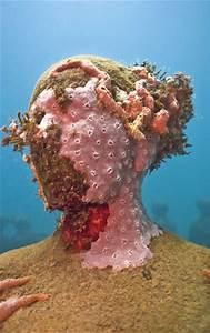 Algae & Sponges - Underwater Sculpture by Jason deCaires ...