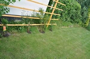 Schnell Rankende Pflanzen : sichtschutz rankgitter aus holz f r den garten selber bauen hausbau blog ~ Frokenaadalensverden.com Haus und Dekorationen
