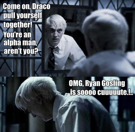 Draco Memes - draco malfoy memes 28 images top harry potter memes and wallpapers draco malfoy memes harry
