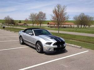 Gt500 For Sale Near Me Cargurus in 2020   Gt500, Ford shelby, Shelby gt500