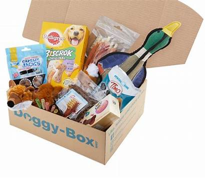 Doggy Box Licious Paw Doorstep Delivered Fun