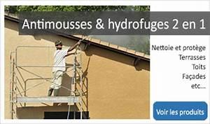 Anti Mousse Et Hydrofuge 2 En 1 : produit anti mousse toiture et fongicide efficaces fongistop ~ Melissatoandfro.com Idées de Décoration