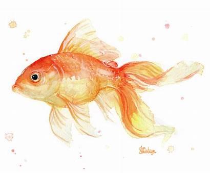 Watercolor Goldfish Painting Tank Transparent Olga Shvartsur
