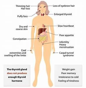 Post-partum Thyroiditis Explained
