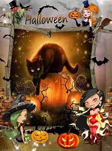 Schöne Halloween Bilder : katzenbilder halloween ~ Watch28wear.com Haus und Dekorationen