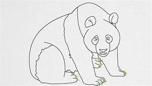 How to draw a PANDA step by step - YouTube