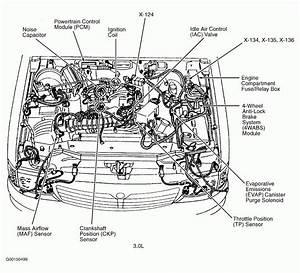 200passat V6 Engine Diagram 8230 Fischidicarta It