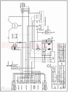Sahara 150cc Go Kart Wiring Diagram