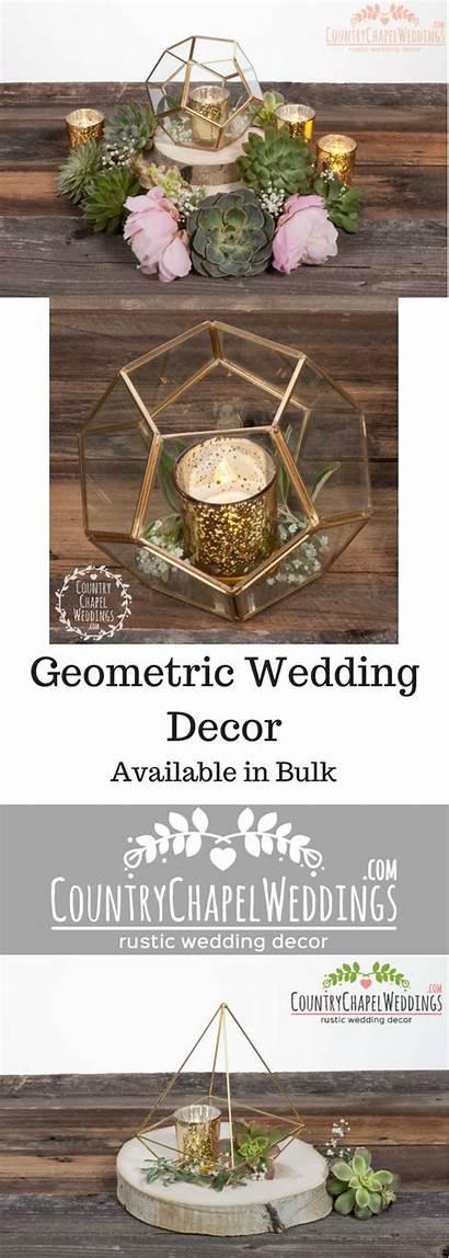 Geometric Succulents Bulk Wood Centerpieces Terrarium Slabs