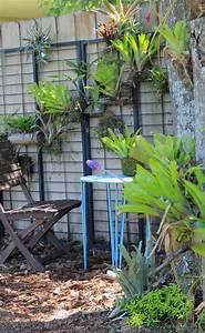 The, Rainforest, Garden, Make, A, Vertical, Garden, From, Cheap, Suet, Basket, Birdfeeders