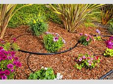 Drip System For Garden 17 Best Images About Drip