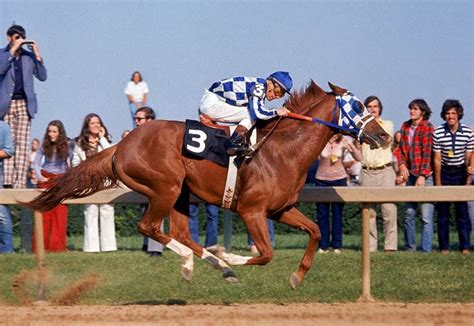secretariat horse belmont racing triple crown race stakes wins derby horses preakness greatest win 1973 thoroughbred record kentucky run racehorse